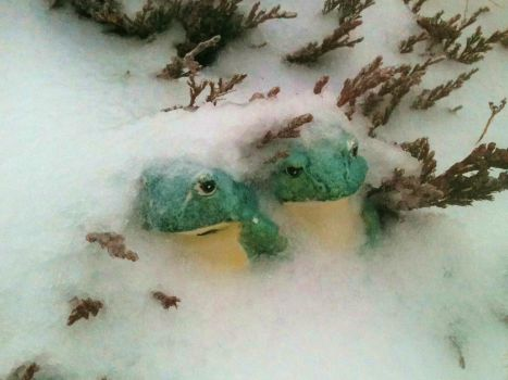 Icy Frogs by EponaCapaill