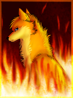 Fytuh on fire by FireMoon9