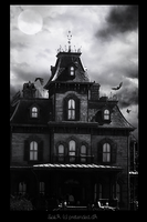 Haunted House by Pretended