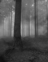 Premade Background 607 by AshenSorrow