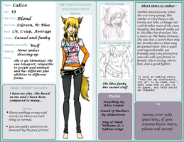 OC Information Sheet-Calico by CalicoWoolfe