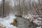 Snowy Creek at the foot of Chilhowee Mt by CrystalMarineGallery