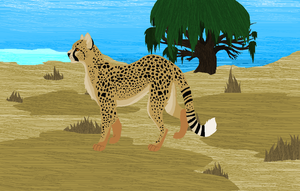 Cheetah without black line by King-Birdd