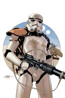 Star Wars 20 Cover by TerryDodson
