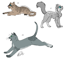 || Adopt Dewcloud x My cat Kits || Close by xXSlytherinLeoXx