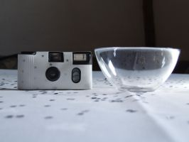 Camera and sweet bowl by lilleypants