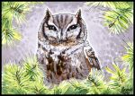 ACEO Eastern Screech Owl by SageKorppi