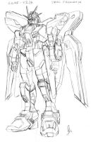ZGMF-X20A Strike Freedom by Riza23