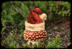 Santa Shroom by shawnstorm