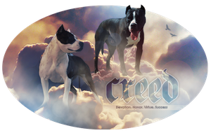 Creed by reinafawn