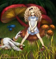 Alice in the wonderland by Debiyume