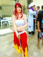 Cosplay Erza Scarlet - Fairy Tail by sarafloresta