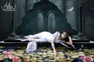 lotus pond by Arshad-Art-Concept