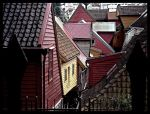 Roofs by Vildblomst
