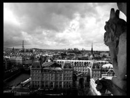 Paris From Notre Dame by BreakTheNet