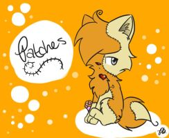 Patches by geckofan1