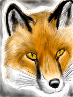 Fox made with Colors by caseycole11