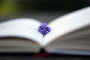books, flowers, love them by herooftheheadset
