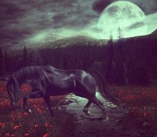 Lonely Night by ObscureLilium