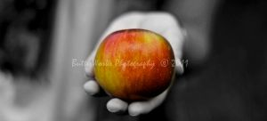 An Apple a Day by butterphoto