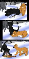 Tips for Surviving the Winter by midnight-risu