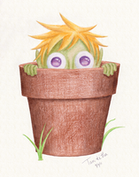 In the pot by Tankitha