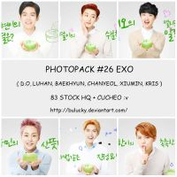 PHOTOPACK #26 EXO by BuLucky