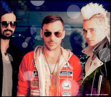 30 stm Display6 by my-violet-dreams