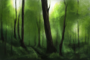 Forest by Marry-An