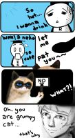 Ren And Grumpy Cat by Rahimi-AF