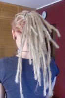 blond dreads. by Kahu90