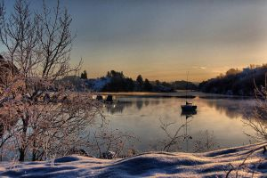 Frosty morning by Britha