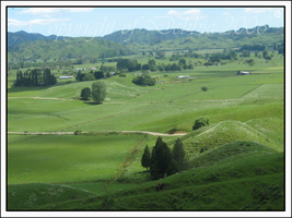 As far as the eye can see by Tepara