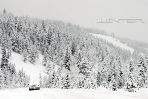 White-out by N1ghtf4ll3r