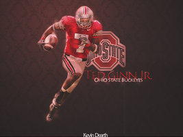 Ted ginn Jr wallpaper by Kdawg24