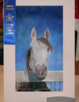 my rodeo project by girlngreen7