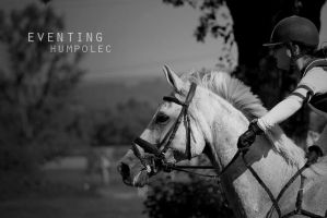 Eventing by bureska