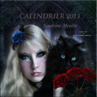 Calendrier 2013 by noune83