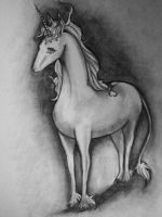 The Last Unicorn by Morna