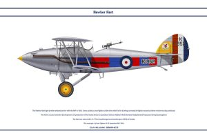 Hart GB 23 Sqn by WS-Clave