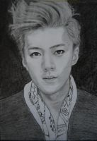 Men's Style Magazine Sehun by Lienka32
