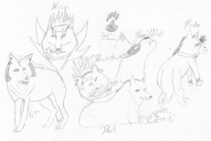 Wolf Group of Gaians by FFRedXIII