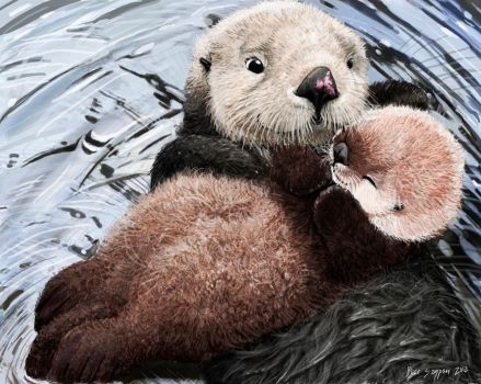 sea otter mom's soft lullaby by Psithyrus