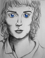 Frodo by Mrs-Elric-613