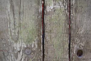 Texture: Old Board by pandora1921