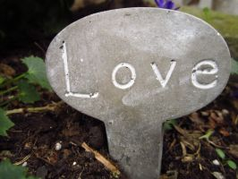 Love Plant by love-dimitra