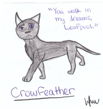 Crowfeather by leah22wolf