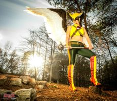 Hawkgirl by KiraKouture