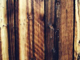 Barn Wood 1 by PTdesigns