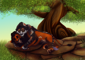 Peaceful napping by PatchestheCalico